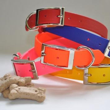 Zeta Waterproof Dog Collars | Stink-Proof and 100% Waterproof