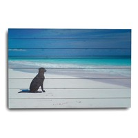 """""""Dog at the Beach"""" Photographic Print"""