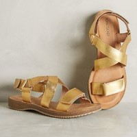 Adam Tucker Arianna Sandals