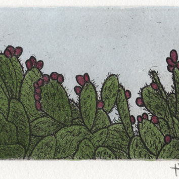 Cactus Art Etching Print with Aquatint and Watercolor Home Decor Southwest Art Print Wall Art