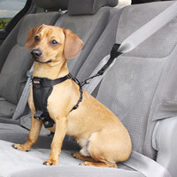 Petco Premium Dog Seat Belt Extension