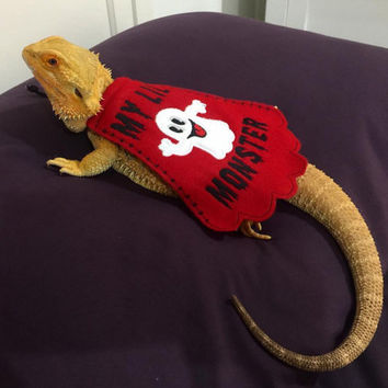 Bearded Dragon Halloween Costume - Cape - My Lil Monster