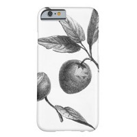 intage zapote exotic fruit etching case barely there iPhone 6 case
