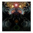 Meditational Visions Poster from Zazzle.com