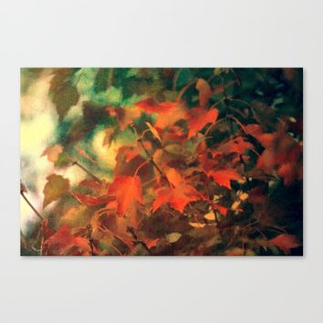 Fall Blanket Of Leaves Canvas Print by Theresa Campbell D'August Art