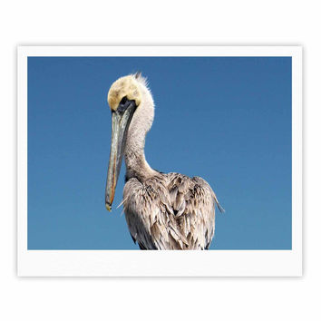 "Philip Brown ""Pelican"" Blue Photography Fine Art Gallery Print"