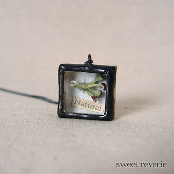 Woodland Earth Day Necklace, Miniature Shadow Box Necklace with Natural Botanical Specimen, Soldered Nature Reliquary Jewelry