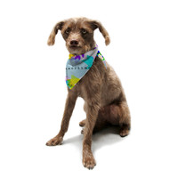 "Sreetama Ray ""Seasons Summer"" Rainbow Leaves Pet Bandana"
