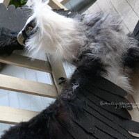 Bearded Vulture Poseable Art Doll SALE