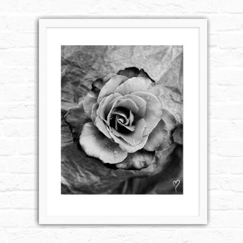 "Black and White Print, Rose in Black and White Rose, Flower Art, Fine Art Print, Modern Home Decor, Black and White Photograph ""Distinction"""