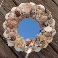 Coastal Mirror, Seashell Nautical Mirror, Exotic Beach Shell Mirror, Gifts for her