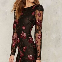 Nasty Gal Collection Bologna Embroidered Mini Dress