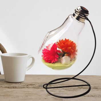 Clear Light Bulb Shape Plant Flower Vase Hydroponic Container Bottle + Stand