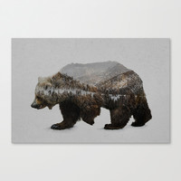 The Kodiak Brown Bear Canvas Print by Davies Babies