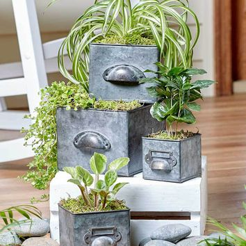 Galvanized Drawer Planter Set of 4 Lined Graduated Sizes Nesting Indoor Outdoor