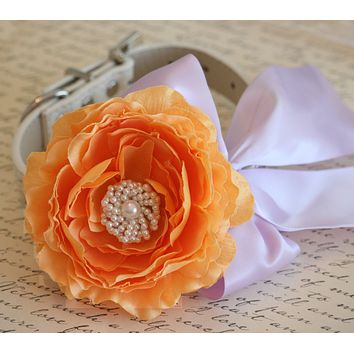 Pastel Peonies Orange and Lavender Floral dog Collar, Pet Wedding accessory
