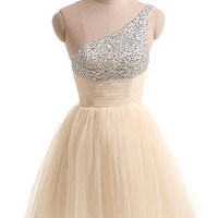 Gorgeous Bridal Pretty Mini Cocktail Skirt Tulle Cheap Homecoming Dress (XXL)