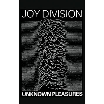 Joy Division - Domestic Poster