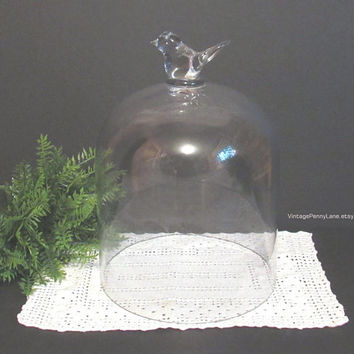 Large Vintage Glass Cloche Display Dome, Bird Detail, Bell Jar, Terrarium, Plant Cloche, Air Plant Cloche Fairy Garden