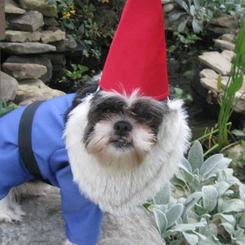 Traveling Gnome Medium Dog Halloween Costume