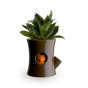 So into this design on Fab! Squirrel Self-watering Pot #FabForAll
