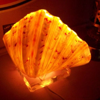 AMAZING Vintage Lighted Clam Shell Hawaiian Tiki Bar Accent Lamp / Mid Century Modern Atomic Kitsch Pad / Florida Room Light Real Sea Shell