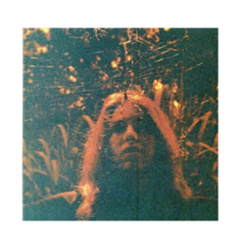 Turnover - Peripheral Vision Vinyl LP Hot Topic Exclusive