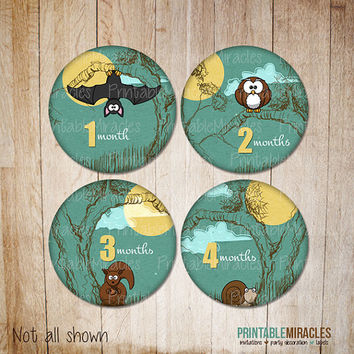 Woodland Baby monthly stickers PRINTABLE milestone Iron on transfer Onesuit stickers circles INSTANT DOWNLOAD animals newborn kids girls boys