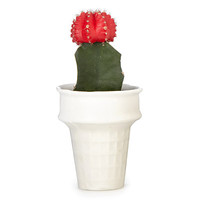 Ice Cream Cone Mini Planter