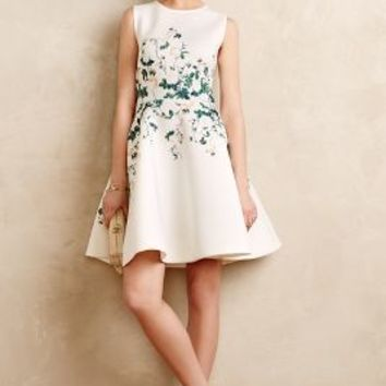 Sweetheart Roses Dress by Erin Fetherston Neutral Motif