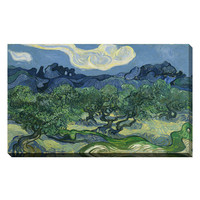 Olive Trees by Vincent Van Gogh (Giclee Canvas)