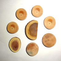 Jewelry supplies making findings. Natural wood for pendants, earrings, necklaces, rings, bracelets, brooches, charms, keychains, magnets ...