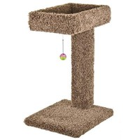 Cat Ware Kitty Cactus Scratch Post & Bed w/Toy 24""