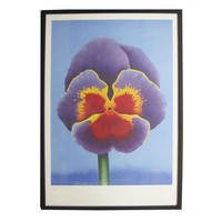 """Pre-owned """"Big Pansy"""" Serigraph by D. George"""