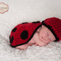 Newborn Hat and Lady Bug Photo Prop