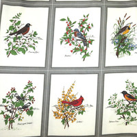 Quilting Panels, Birds, American Song Birds - Cranston VIP Screen Print, yoursewingbasket