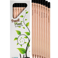 Plant and Grow: A Pencil That Can Grow Into a Plant!