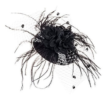 Zad Womens Feather & Mesh Fascinator Hair Clip Cocktail Party Hat (Black/White)