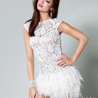 embroidered lace feathered skirt short dress171924