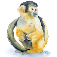Monkey Original Watercolor Painting - Squirrel Monkey - 9 x 12