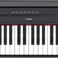 Yamaha P115 88-Key Weighted Action Digital Piano with Sustain Pedal and Power Supply, Black