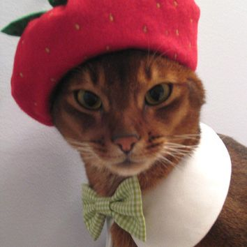strawberry beret by CatAtelier on Etsy