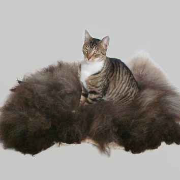 Cat Bed Sheep-friendly Pet Bed Mat Wool Fleece Felted Rug - Navajo Churro Silver Black - Supporting Small Farms of The United States