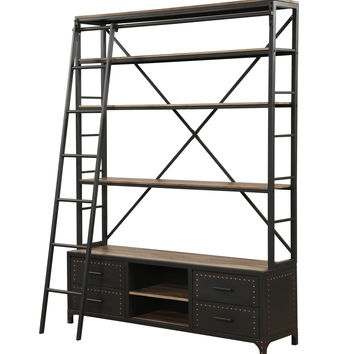 ACME Actaki Etagere Bookcase with Ladder in Sandy Gray