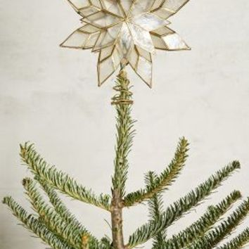 Capiz Star Tree Topper by Anthropologie in Clear Size: One Size Sweaters