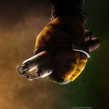 Teenage Mutant Ninja Turtles 11x17 Movie Poster (2014)