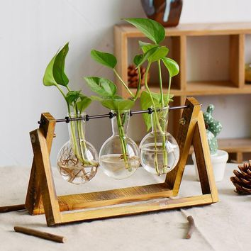 Creative Home Decoration Accessories Transparent Plant Glass Vase Terrarium For Flower Crystal Vase Home Decoration Accessories