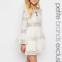 White Cove Petite | White Cove Petite All Over Lace Bell Sleeve Panelled Skater Dress at ASOS