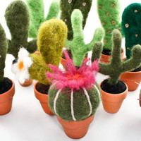 Needle Felted Cactus (Small)