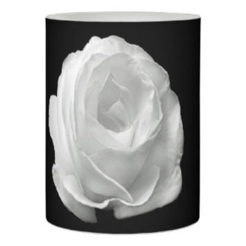 white-rose-on-the-black-background